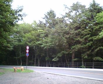 20060803_31
